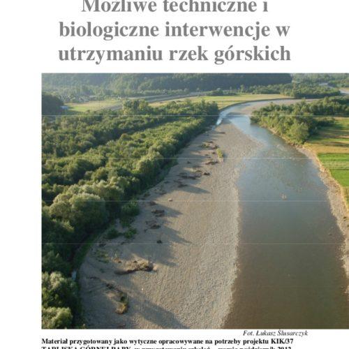 Możliwe techniczne i biologiczne interwencje w utrzymaniu rzek górskich